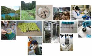 Klimatska ranjivost i mogućnosti prilagodbe slatkovodnih ekosustava