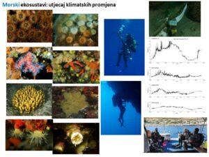 Istraživanje utjecaja klimatskih promjena na obalno područje grada Dubrovnika i NP Mljet